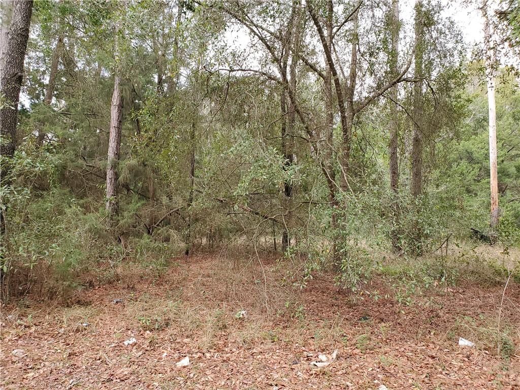 Lot 2 N MAIN STREET Property Photo - CHIEFLAND, FL real estate listing
