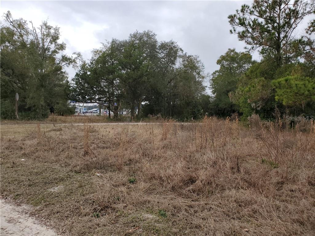 Lot 4 N MAIN STREETS Property Photo - CHIEFLAND, FL real estate listing