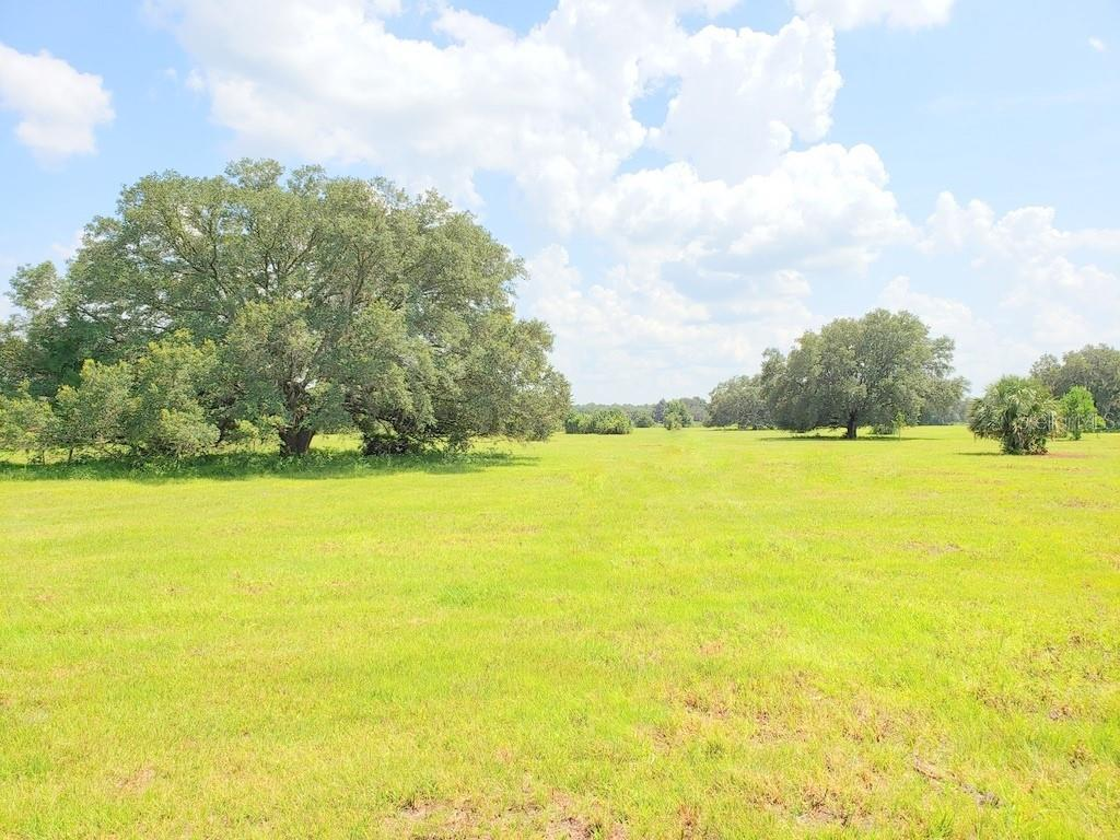 Lot 2 (11.5ac) Ne Highway 315 Highway Property Photo
