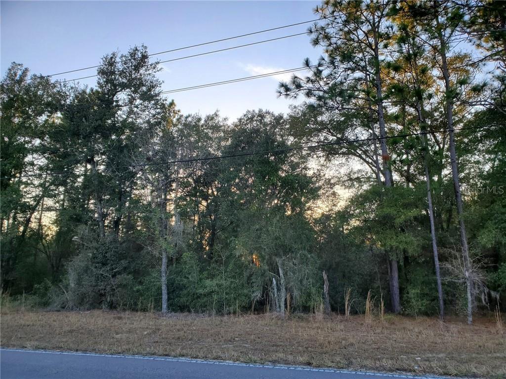 00 NE 105TH AVENUE Property Photo - BRONSON, FL real estate listing
