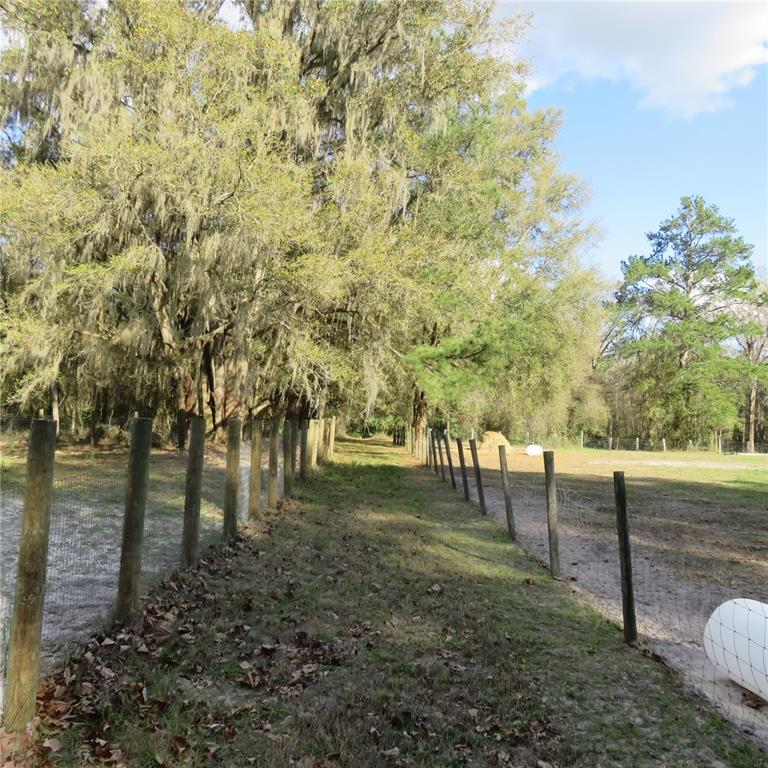 0 NW 150TH AVE ROAD Property Photo - MICANOPY, FL real estate listing