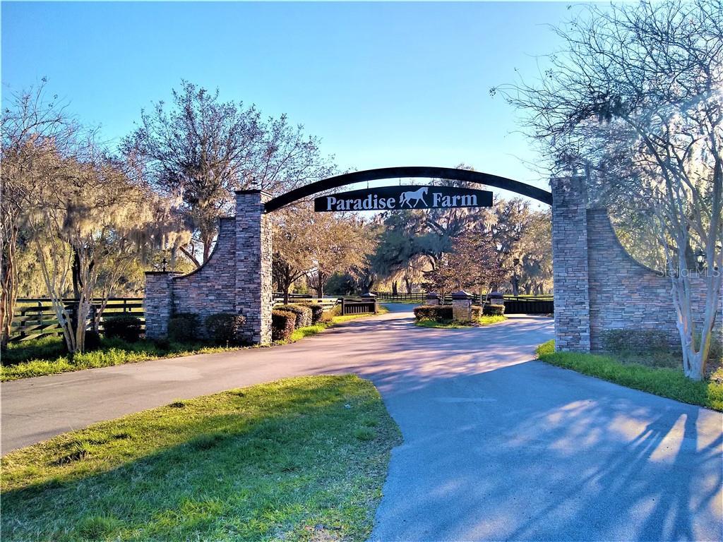 0 NW 0 Property Photo - WILLISTON, FL real estate listing