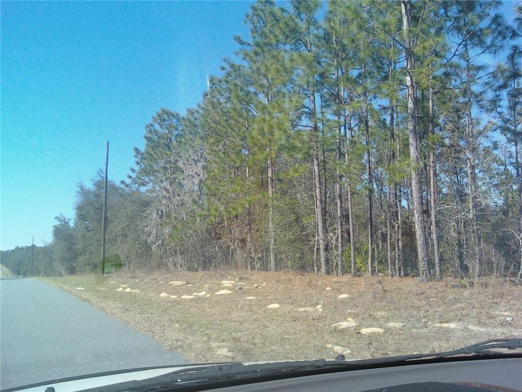 8207 N MERRIMAC WAY Property Photo - CITRUS SPRINGS, FL real estate listing