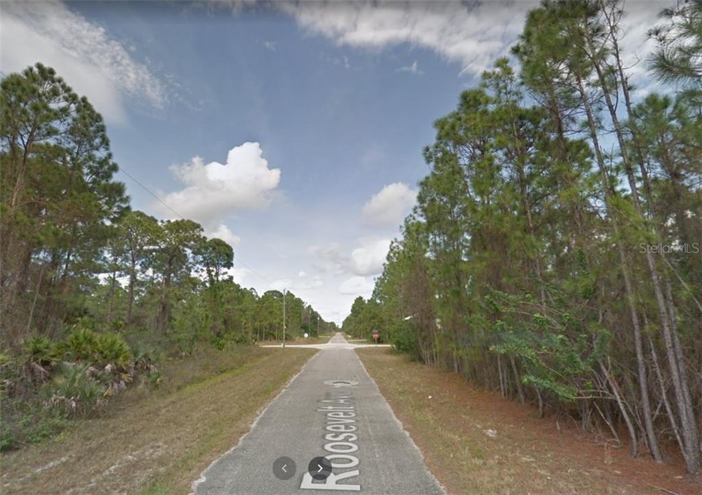 2018 ROOSEVELT AVENUE Property Photo - ALVA, FL real estate listing