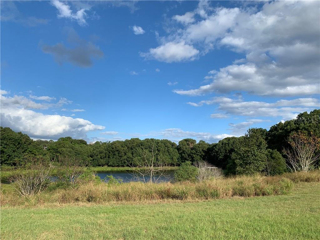 TBD LAKE BURNS ROAD Property Photo - UMATILLA, FL real estate listing