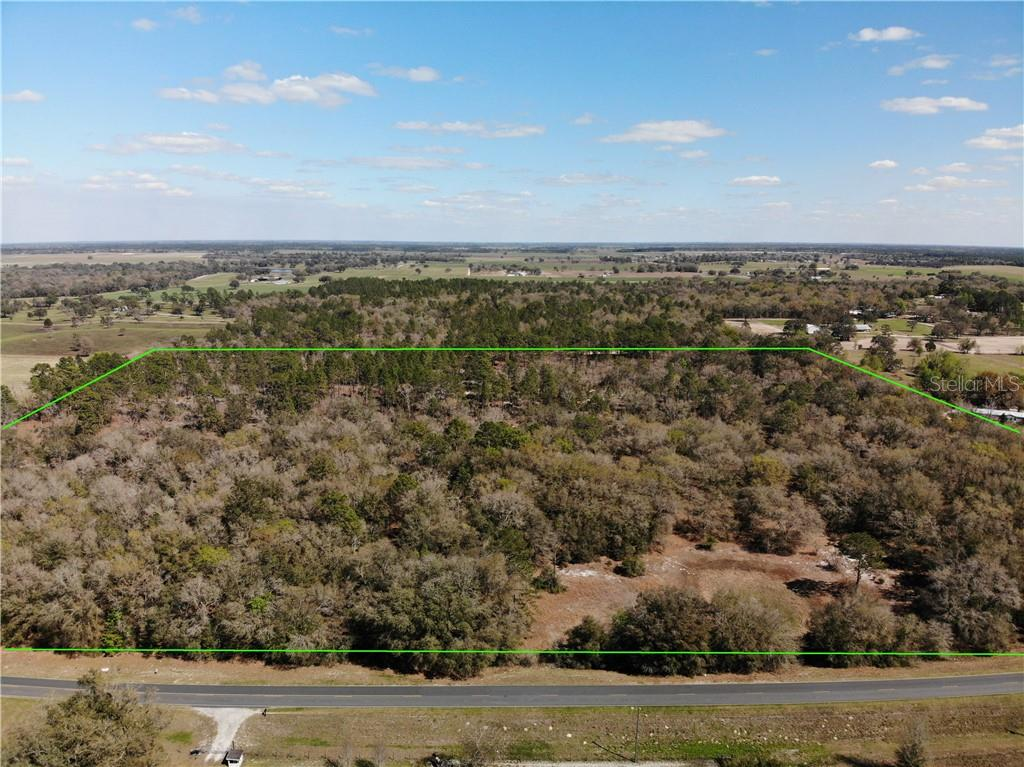 3431 NE COUNTY ROAD 337 Property Photo - BRONSON, FL real estate listing