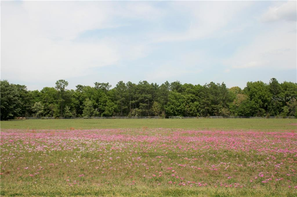 0 SW 128TH LANE Property Photo - OCALA, FL real estate listing