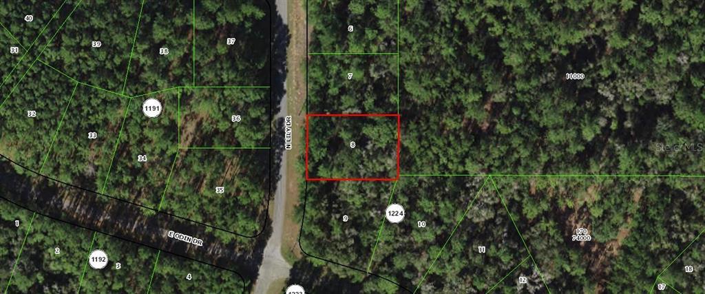 8755 N Lily Drive Property Photo