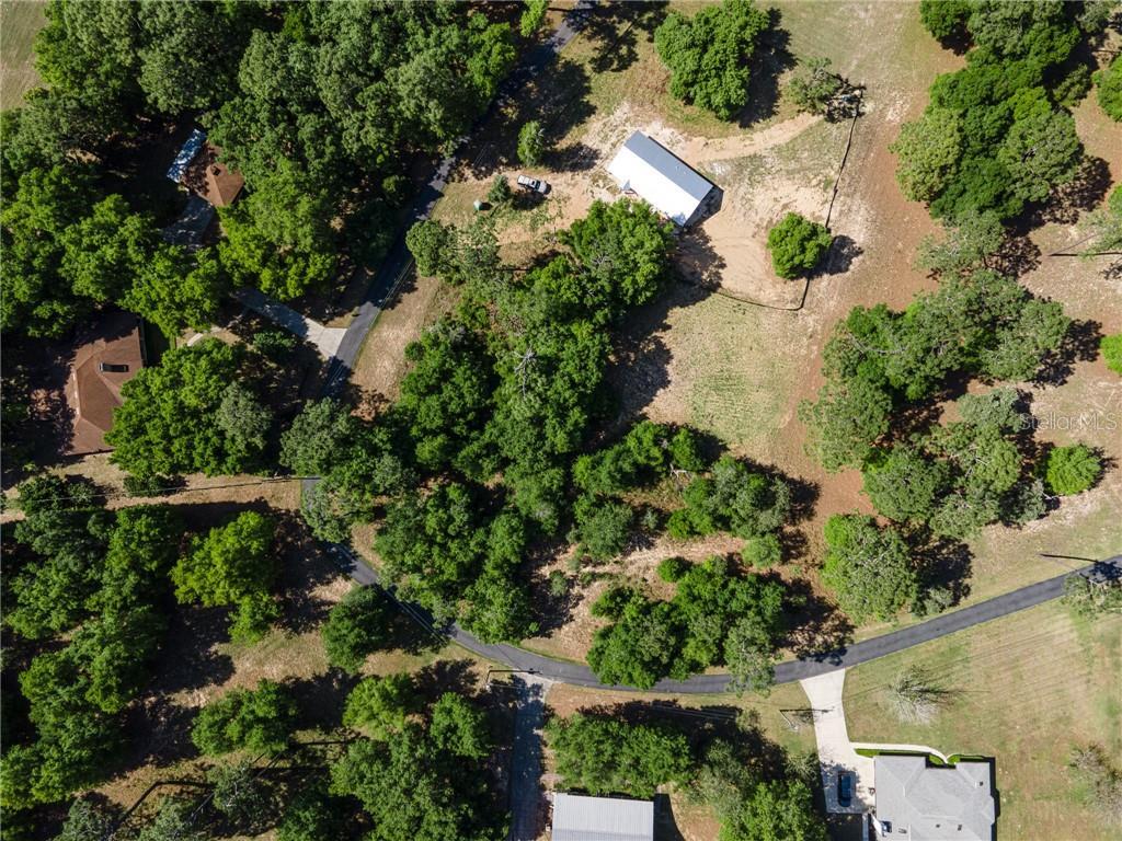 NE 124TH RD Property Photo - SALT SPRINGS, FL real estate listing