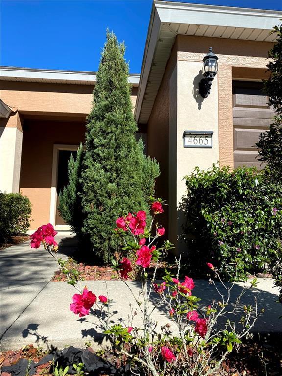4665 SW 41ST STREET Property Photo - OCALA, FL real estate listing