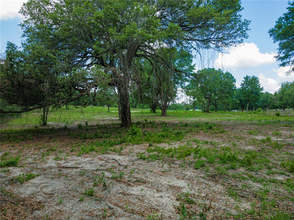 180 SE 165TH COURT ROAD Property Photo - SILVER SPRINGS, FL real estate listing