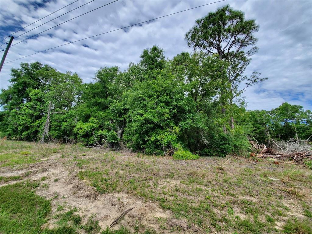 26 Ne State Road 121 Property Photo