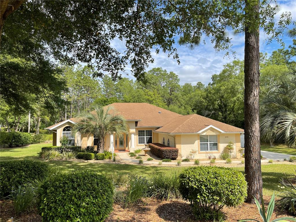 20930 SW 81ST LOOP Property Photo - DUNNELLON, FL real estate listing