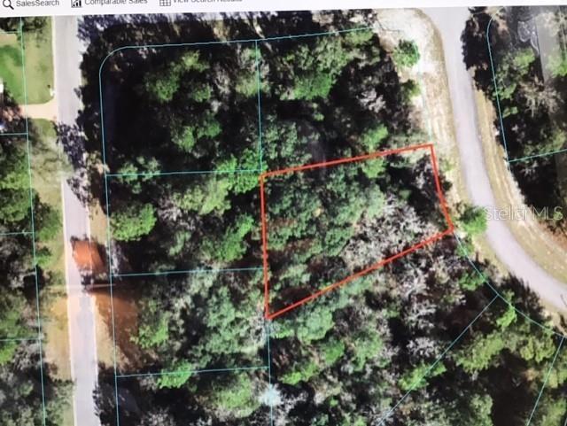 SW 152 LANE ROAD Property Photo 1