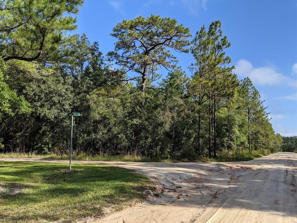 00 Pine Ct Property Photo