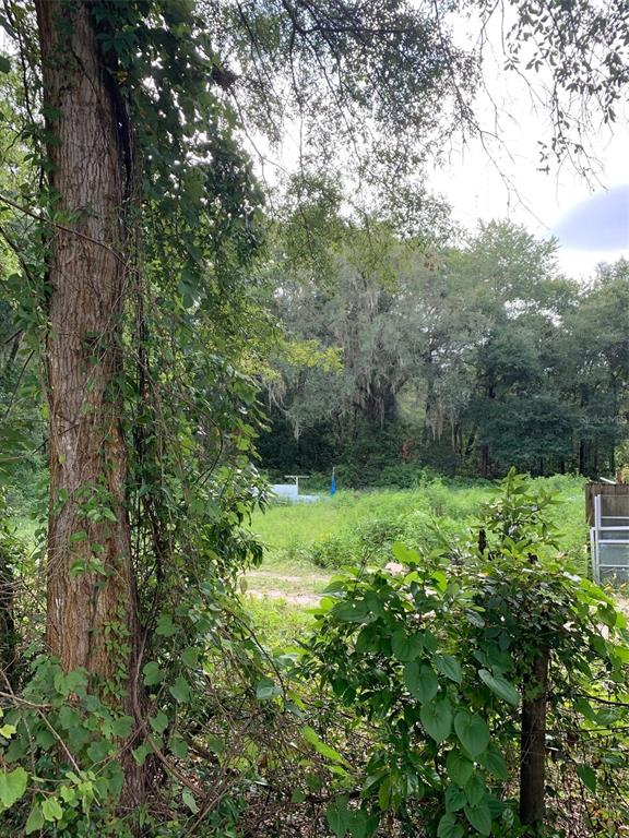 8841 Nw 174th Street Property Photo