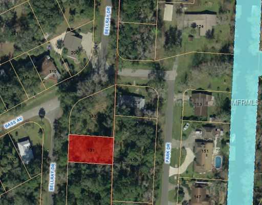 131 BELLRAY DRIVE Property Photo - SATSUMA, FL real estate listing