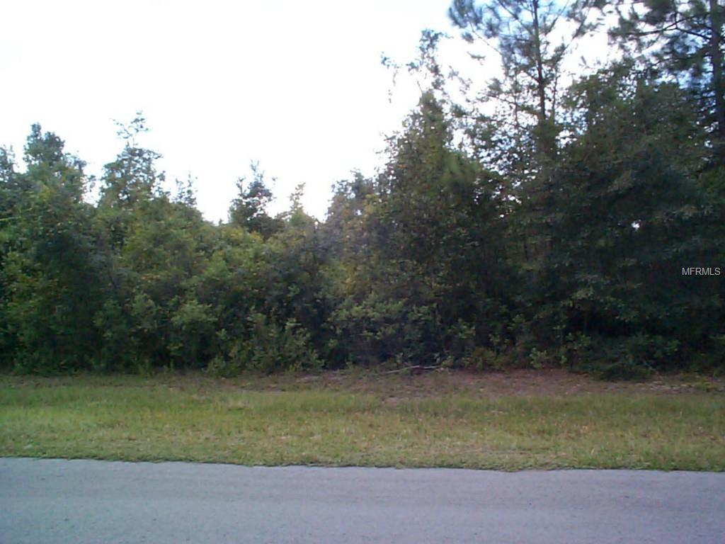 Parcel A&B EAGLE CREEK ROAD Property Photo - PALATKA, FL real estate listing