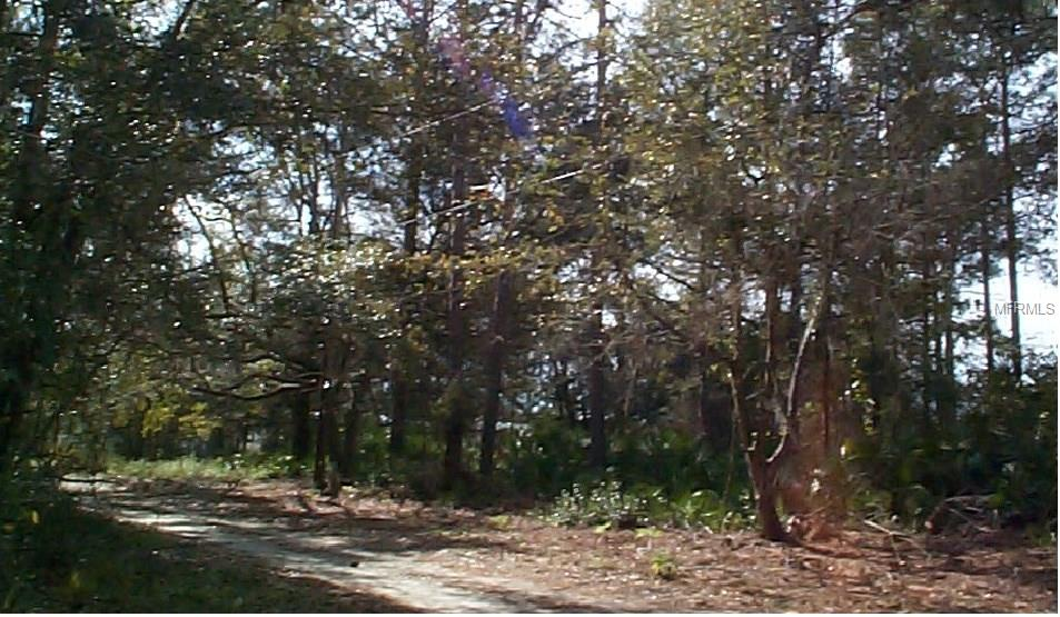 409 NE RUSTIC RD Property Photo - SATSUMA, FL real estate listing