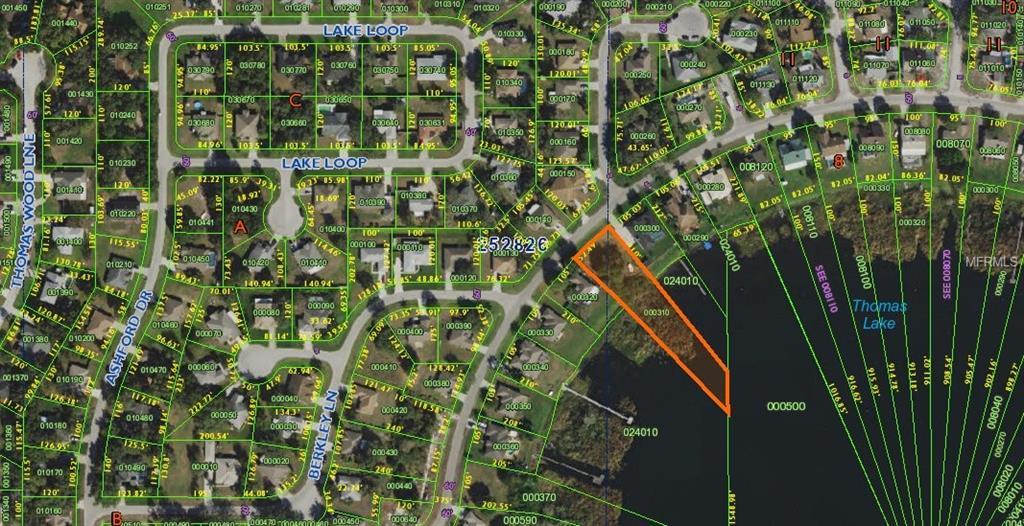 Lake Thomas Drive Property Photo