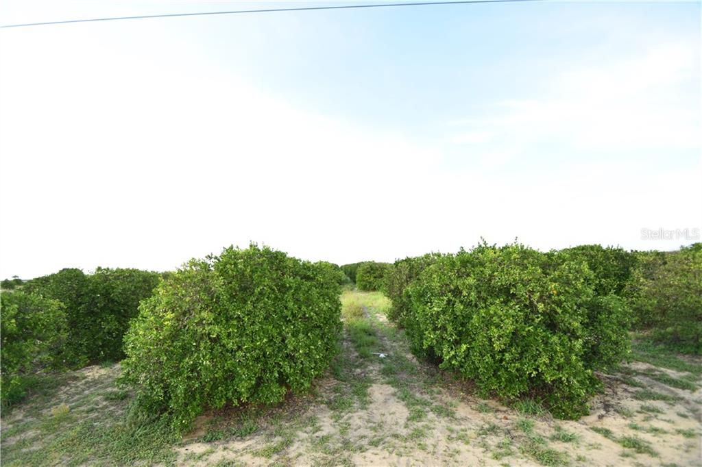 JOHNSON AVE E Property Photo - HAINES CITY, FL real estate listing