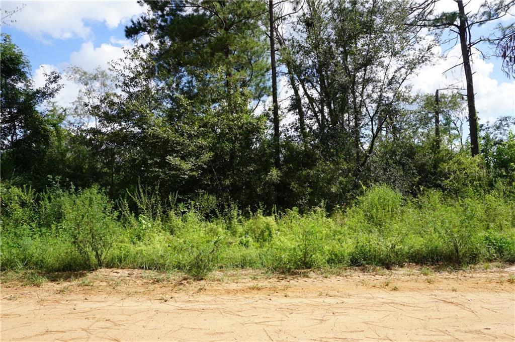 Paradise Circle PARADISE CIR Property Photo - DONALSONVILLE, GA real estate listing