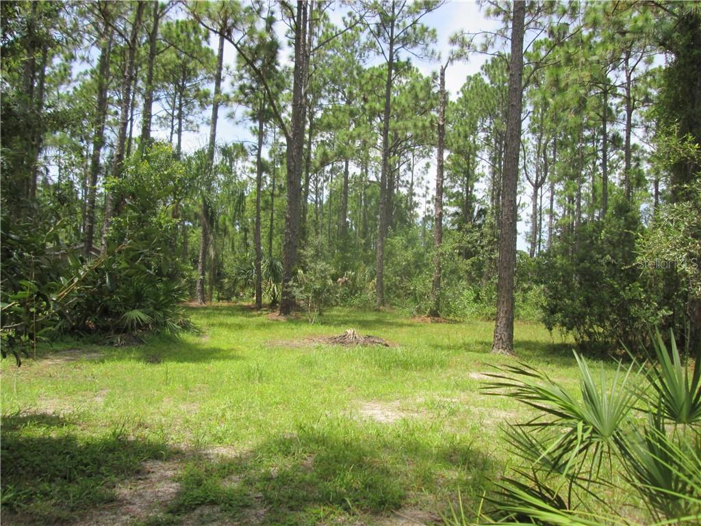 4610 HIBISCUS DRIVE Property Photo - INDIAN LAKE ESTATES, FL real estate listing
