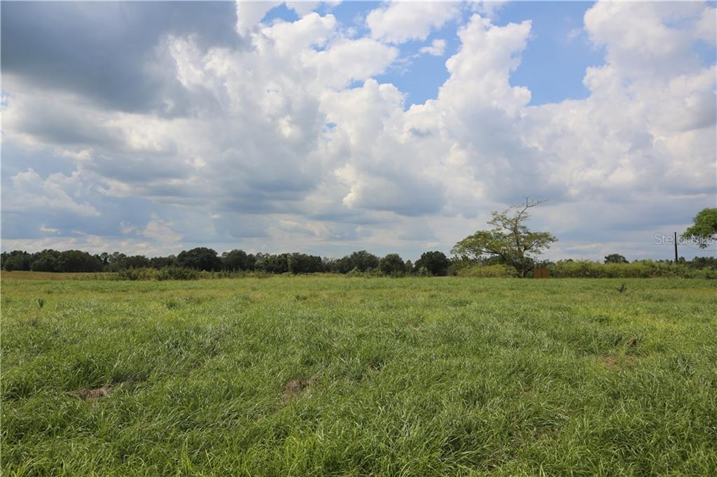 10339 HWY 555 Property Photo
