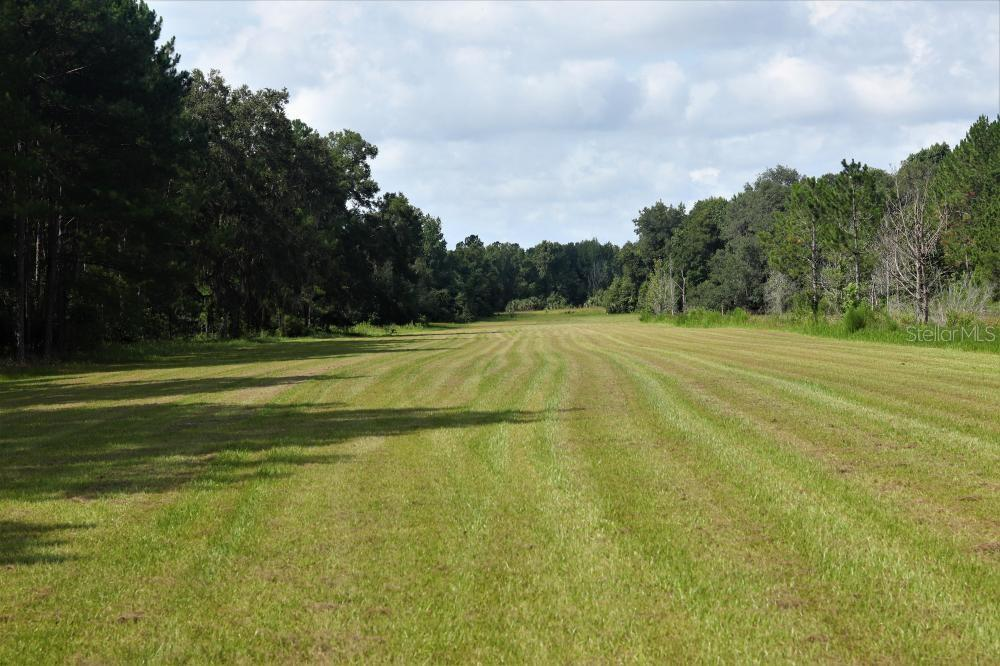 6301 E 316 HIGHWAY Property Photo - CITRA, FL real estate listing