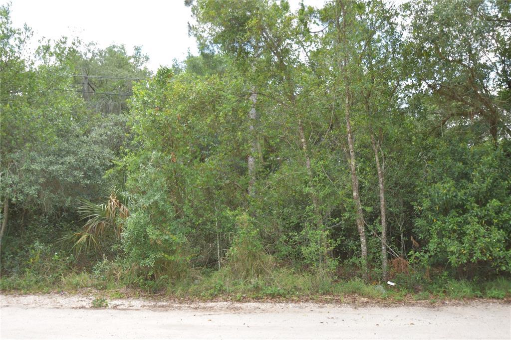 Phillips Road Property Photo