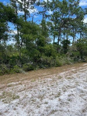 Hibiscus Drive Property Photo