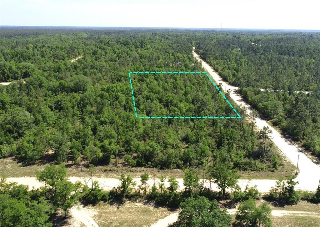 0 WOOD AVENUE Property Photo - ALFORD, FL real estate listing
