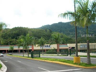 10 PR-10 Property Photo - ADJUNTAS, PR real estate listing