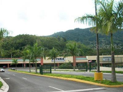 Adjuntas Real Estate Listings Main Image
