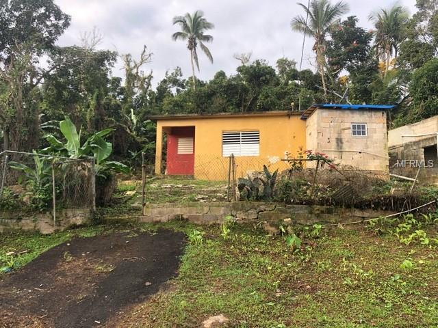 172 JUAN DEL VALLE Property Photo - CIDRA, PR real estate listing