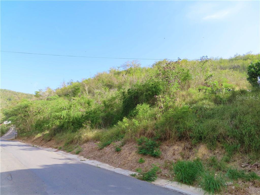 Carr 332 Km 3.5 Interior Carr 332 Km 3.5 Interior.bo Barinas Property Photo