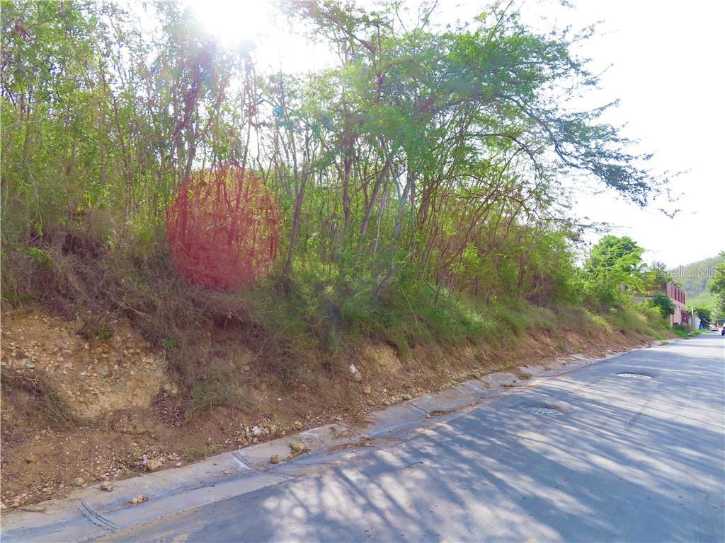 CARR 335 KM 3.5 INTERIOR BO. BARINAS Property Photo - YAUCO, PR real estate listing