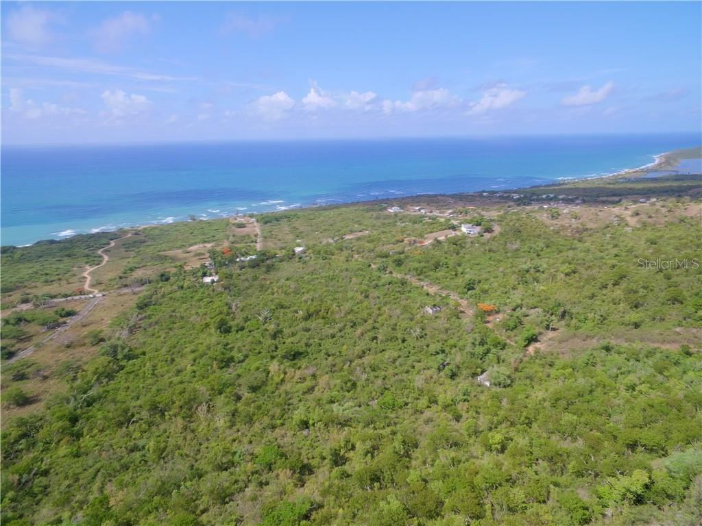1 CARRION COURT Property Photo - VIEQUES, PR real estate listing