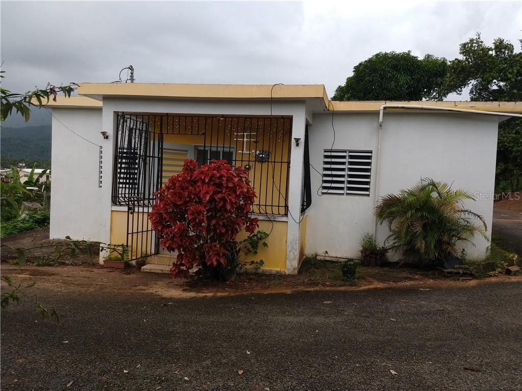 0 CARR. 10 R 523 KM2 BO. ARENAS Property Photo - UTUADO, PR real estate listing