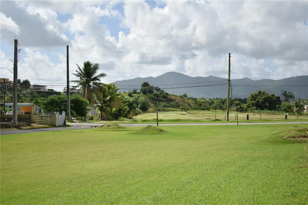 Property Photo - YABUCOA, PR real estate listing
