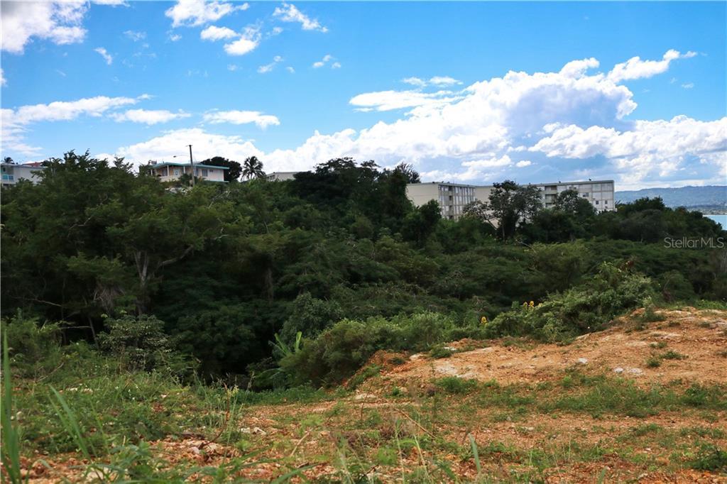 BO CAMASEYES WARD CALLE B VILLA LYDIA Property Photo - AGUADILLA, PR real estate listing