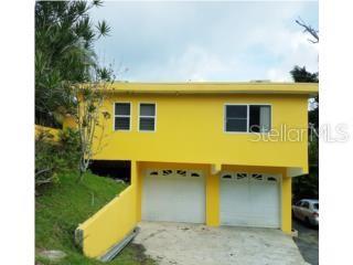Carr 829 Km 2.4 BUENA VISTA Property Photo - BAYAMON, PR real estate listing