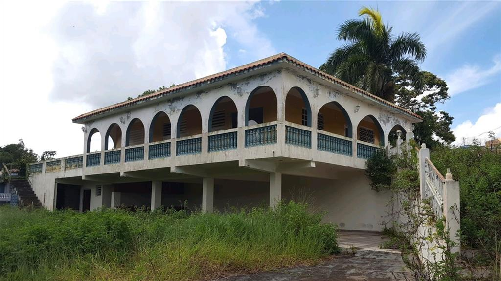 PR 779 Km 6.5 PALOMAS ARRIBA WARD Property Photo - COMERIO, PR real estate listing
