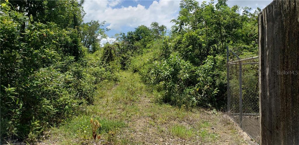 PR 417 km 0.6 BO. PIEDRAS BLANCAS Property Photo - AGUADA, PR real estate listing