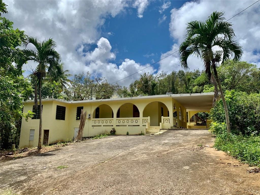 644 Road PUGNADO AFUERA Property Photo - VEGA BAJA, PR real estate listing