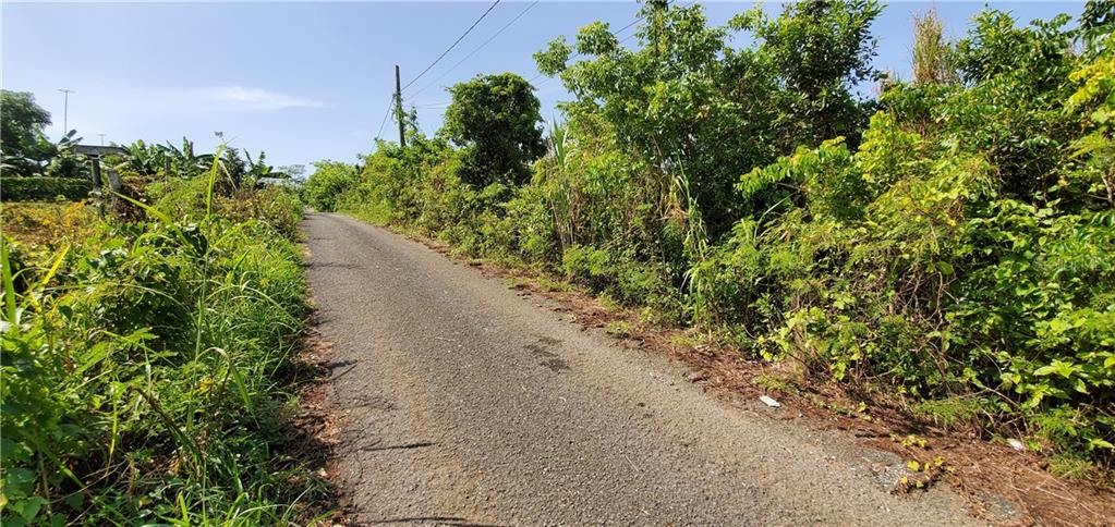 18.469897 -67.08215 BO GUERRERO, AGUADILLA Property Photo - AGUADILLA, PR real estate listing