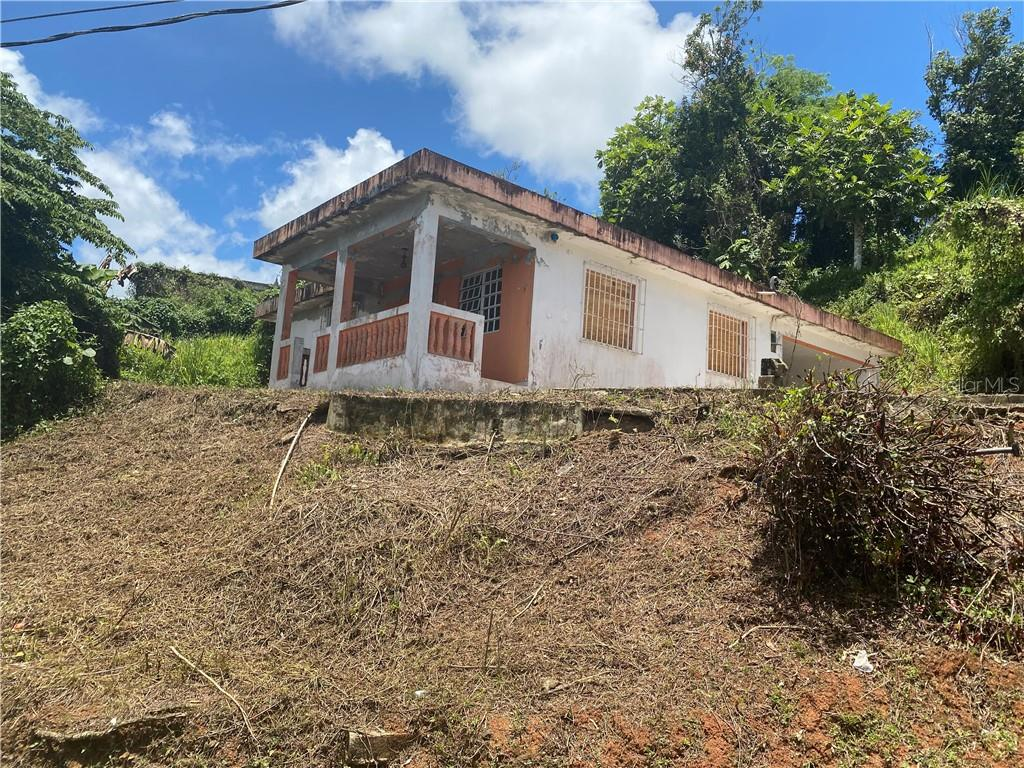 Parc 4 Dalia St. SR791 KM0.5 INT NARANJO WARD Property Photo - COMERIO, PR real estate listing