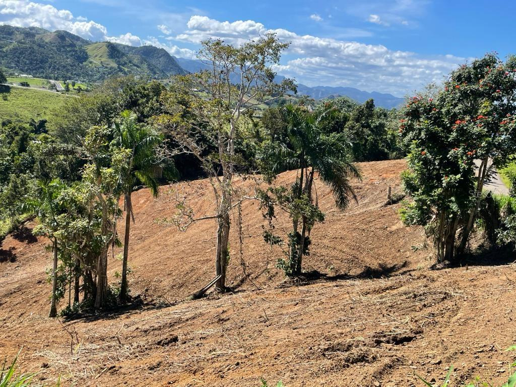 CARR 155 KM 31.5 INT BO. GATO Property Photo - OROCOVIS, PR real estate listing