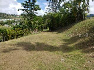 Sr 171, KM 6.4 (int) Evar SR 171, KM 6.4 (INT) EVARISTO HERNANDE Property Photo - CAYEY, PR real estate listing