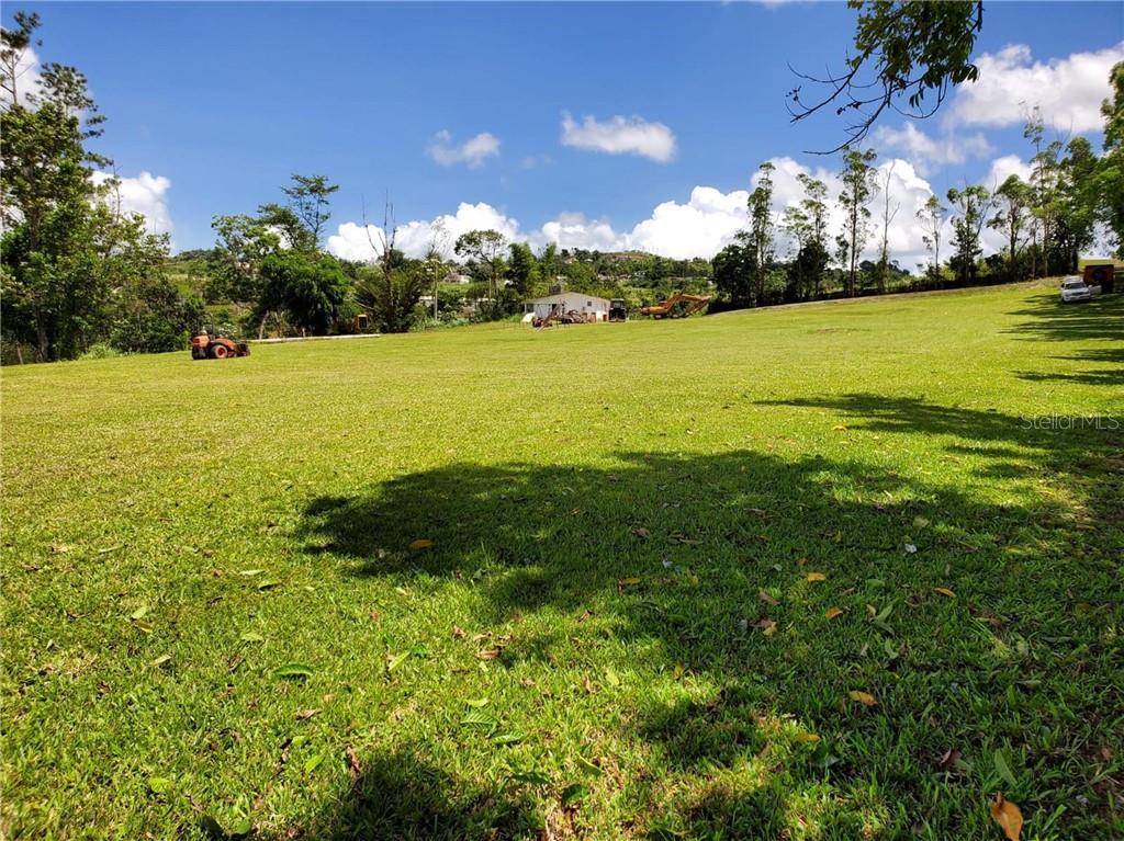 Land Barranquitas BO. QUEBRADILLAS Property Photo - BARRANQUITAS, PR real estate listing